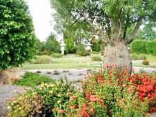 local-japanese-garden